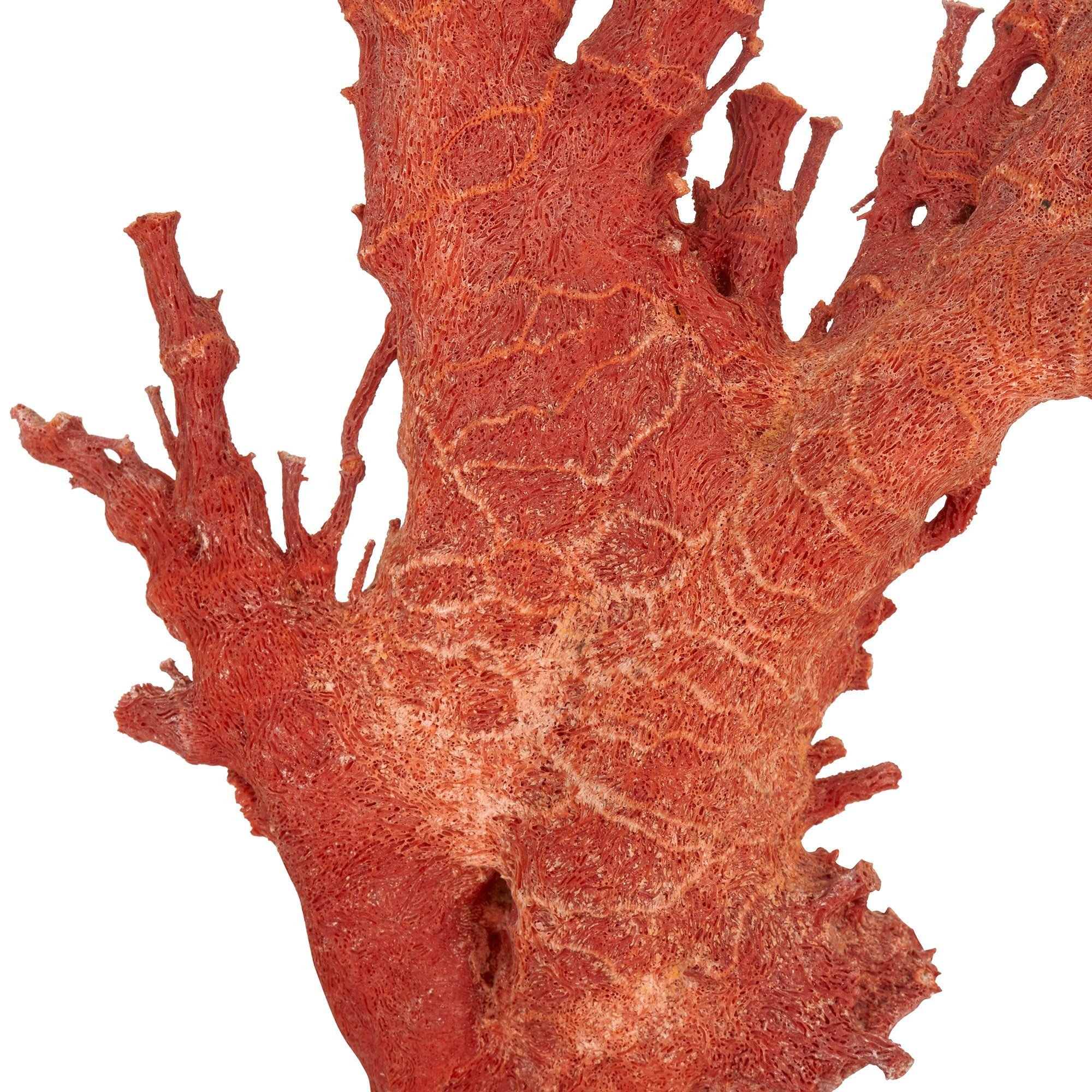 Large Antique Chinese Qing Dynasty Red Coral Specimen