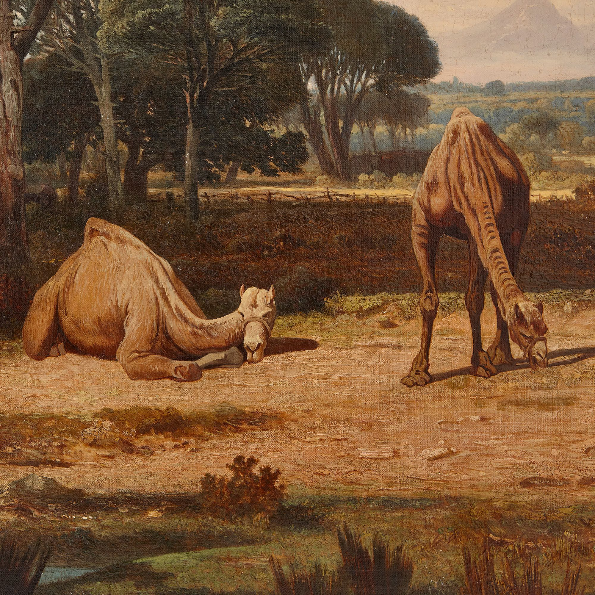 Camels Grazing Orientalist Oil Painting By Lefebvre