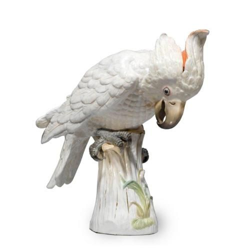 A large Meissen porcelain model of a cockatoo